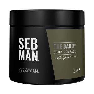 Pommade Tenue Légère The Dandy Seb Man 75ml