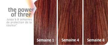 Résultats Color Motion + Wella Professionals