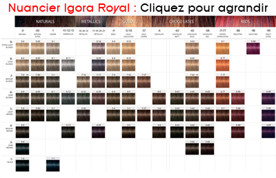 Nuancier Igora Royal Absolutes