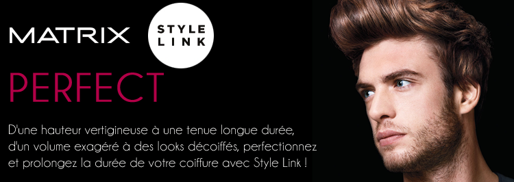 Perfect Style Link Matrix