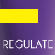 Regulate Amethyste Professional