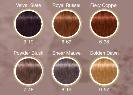 Nuancier Coloration Igora Royal Opulescence Schwarzkopf Professional